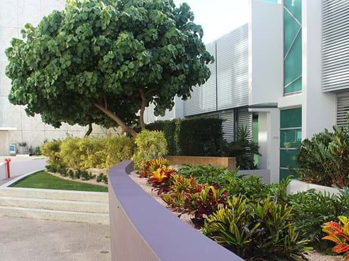 Maintenance - Commercial Over $250k - Landscape Solutions (Qld) - Epraim Island, Paradise Point