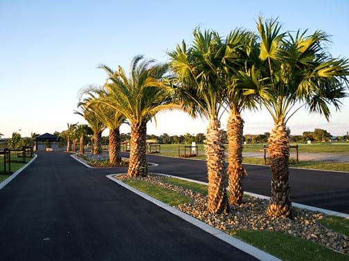 Irrigation - Living Style Landscapes - Entrance Island, Birtinya